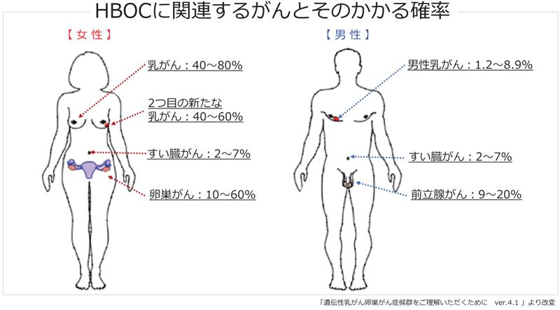 性 乳がん 遺伝